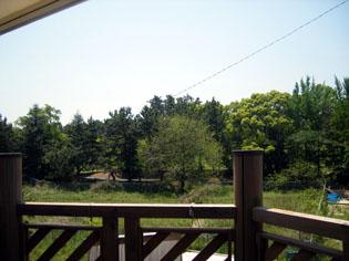 2007-5-19_wago-cafe.jpg