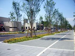 2007-5-20c-g.jpg