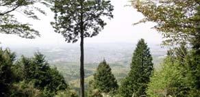 20090419-3.jpg